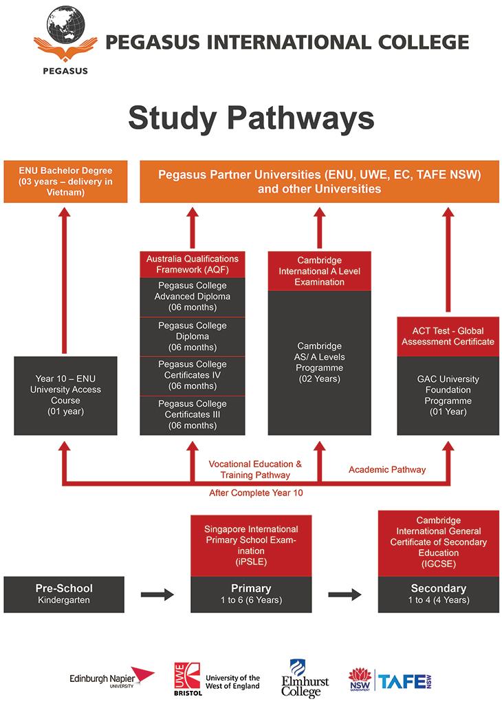 Study-pathway-pic-