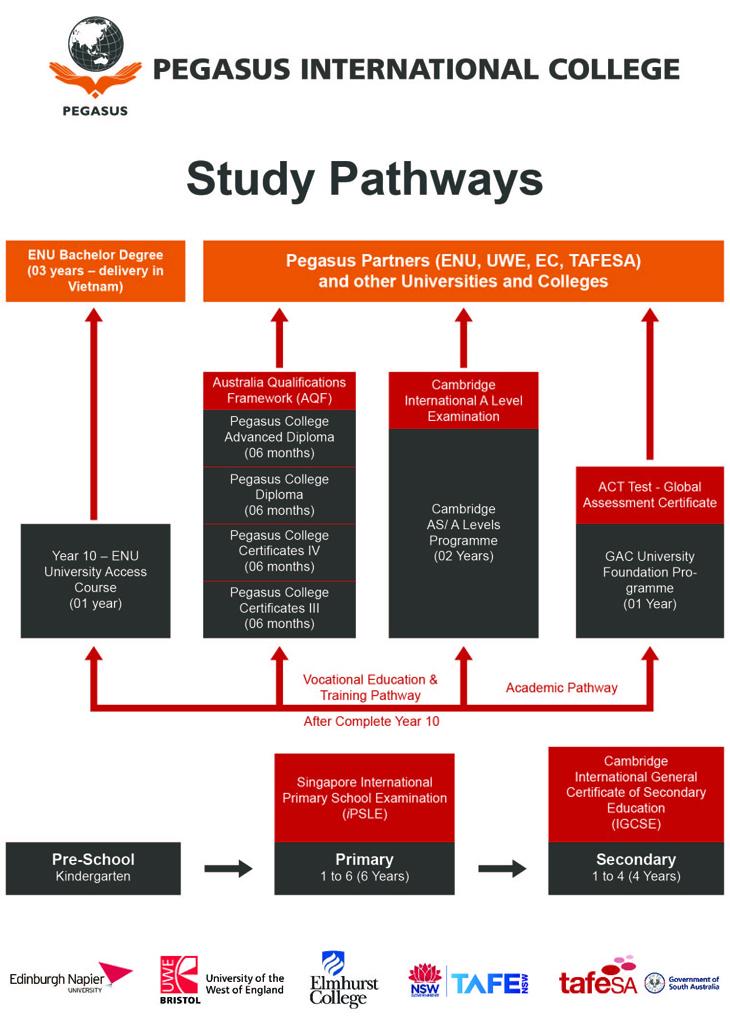 Study path_730x1032.41 px